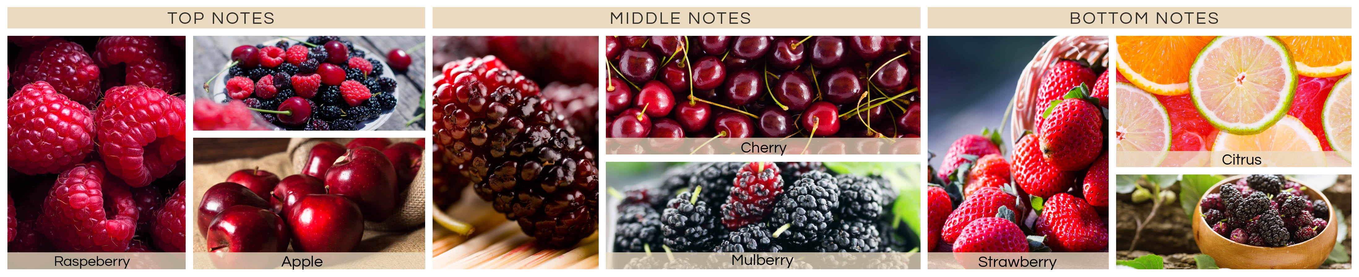 simply-mulberry-jpg5760296c574e7-min591c014784101