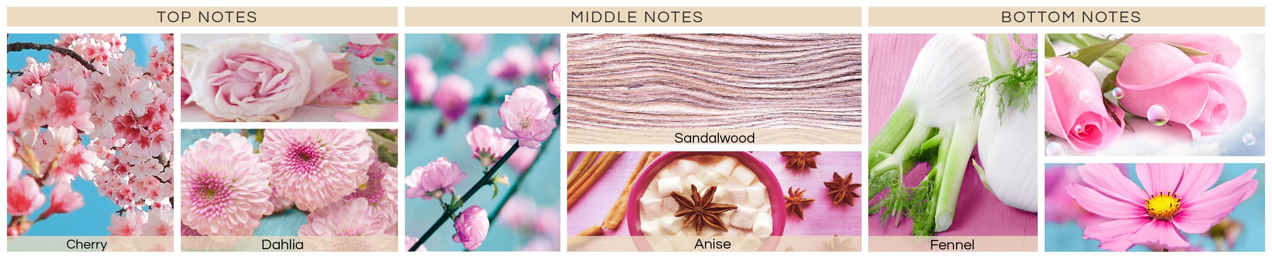 pink-blossom-jpg576030eba85c2-min591c013f45d43