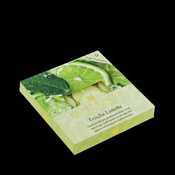 Duft-Teelichter Frische Limette im Geschenkkarton