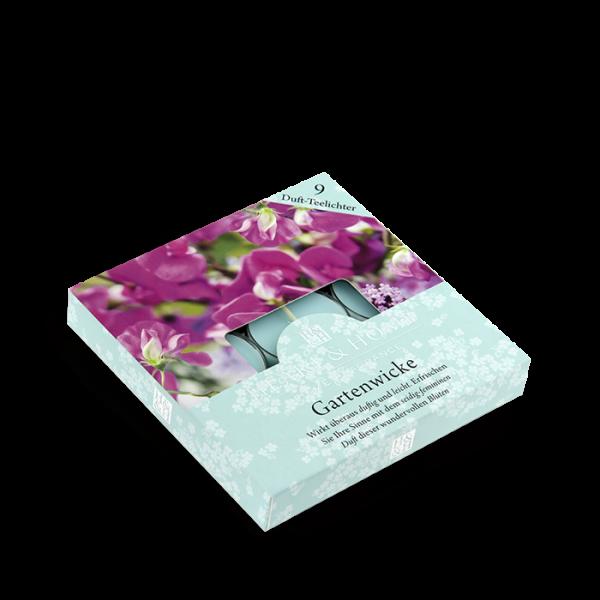 Duft-Teelichter Gartenwicke im Geschenkkarton